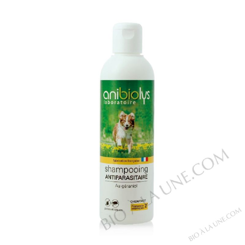 Shampooing antiparasitaire chiot-chien