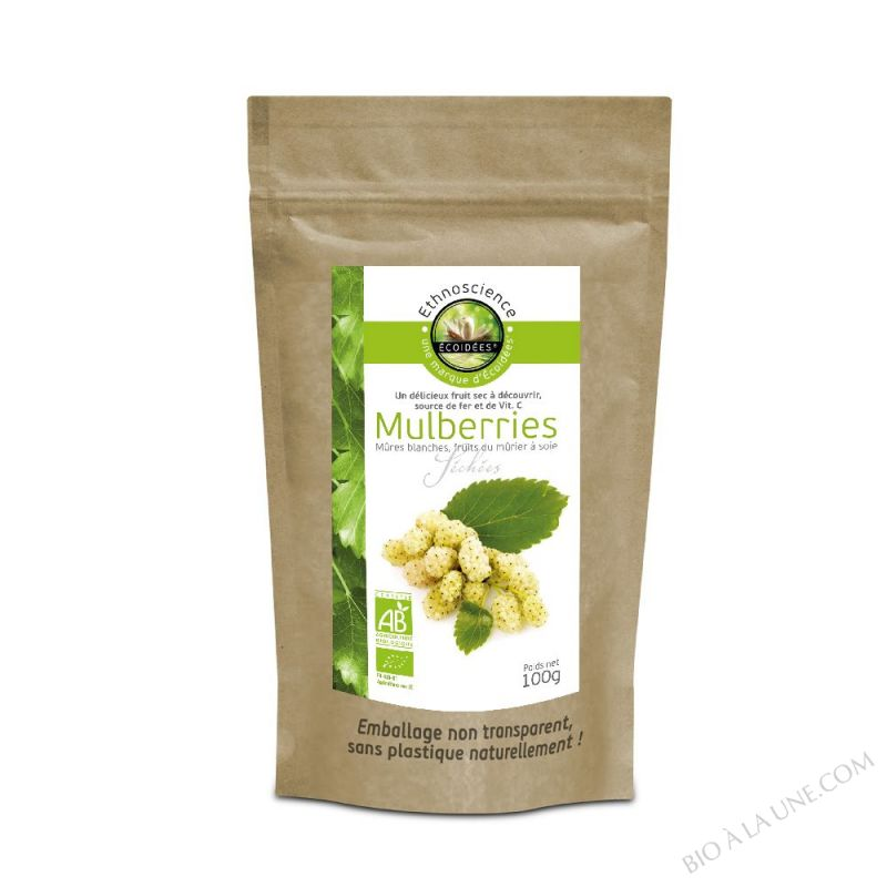 MULBERRIES SECHEES 100G ECOIDÉES