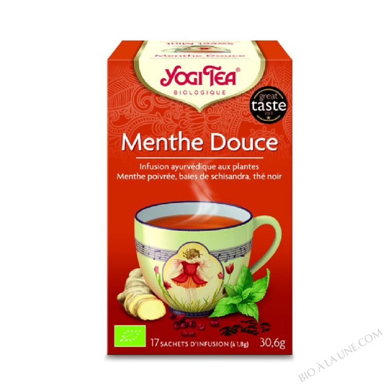 Snack Tea Menthe Douce 17 infusettes