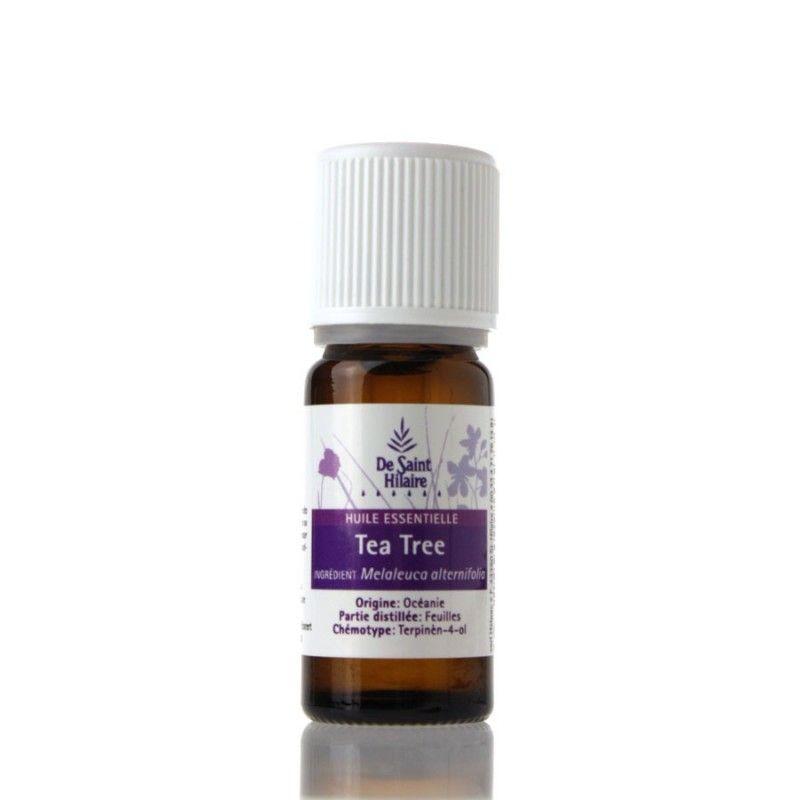 Arbre th la reine des huiles essentielles bio la une - Huile essentielle tee tree ...