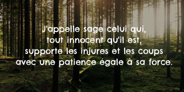 20 Citations Inspirantes De Bouddha Pour Eclairer Votre Vie