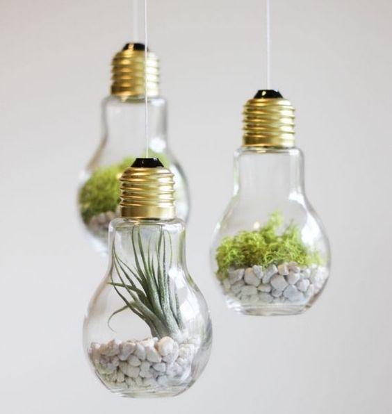 diy 10 id es de cr ations originales pour vos succulentes et plantes grasses bio la une. Black Bedroom Furniture Sets. Home Design Ideas