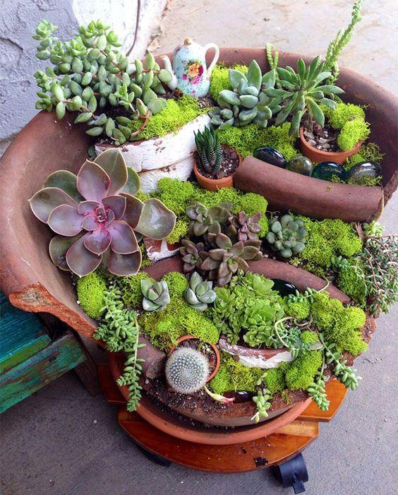 DIY : 10 idées de créations originales pour vos succulentes ...